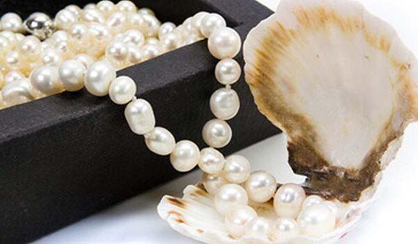 Zeitloser Perlenschmuck aus Akoya-Perlen