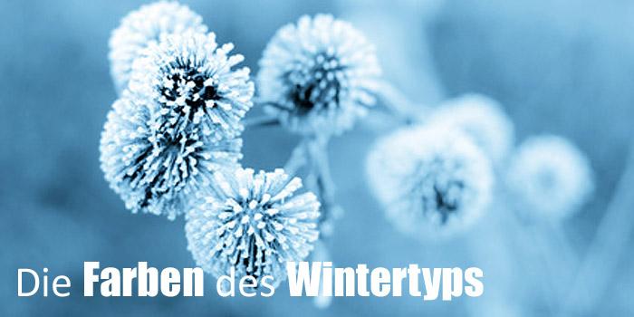 Sommer-Farbberatung für den Wintertypen